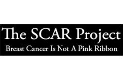 scar_project